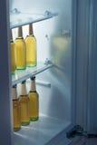 Las botellas alcohólicas arreglan en refrigerador Fotos de archivo libres de regalías