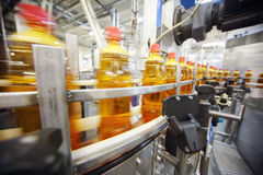 Las botellas amarillas con la cerveza ligera van en la banda transportadora Foto de archivo libre de regalías