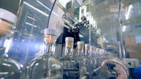 Las botellas con alcohol y casquillos se levantan en un transportador, cierre almacen de metraje de vídeo