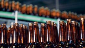 Las botellas de cerveza vidriosas se están moviendo a lo largo del transportador de la fábrica metrajes