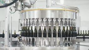 Las botellas del color verde se mueven a lo largo de l?nea del transportador en una f?brica de champ?n o de vino almacen de video