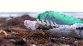Las botellas plásticas, murieron los restos del cangrejo, animales y la otra ruina entre la alga marina en la costa arenosa despu metrajes