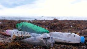 Las botellas plásticas, murieron los restos del cangrejo, animales y la otra ruina entre la alga marina en la costa arenosa despu almacen de metraje de vídeo