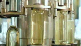 Las botellas se llenan del vino viejo en el transportador de la producción, que gira almacen de video