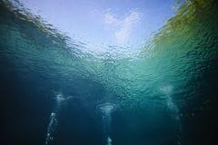 Las burbujas de los buceadores de equipo de submarinismo Fotos de archivo libres de regalías