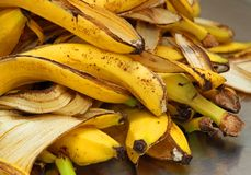 Las cáscaras amarillas del plátano apenas pelan para almacenar la basura orgánica Foto de archivo libre de regalías