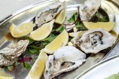 Las cáscaras de ostras sirvieron con el limón en una bandeja del metal Fotografía de archivo