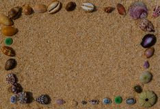 Las cáscaras enmarcan en la arena fotografía de archivo libre de regalías