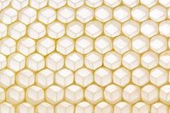 Las células del peine de la colmena de la cera de abejas se cierran encima de fondo Foto de archivo libre de regalías