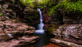 Las caídas de Adán, remetidas adentro una pequeña garganta Ricketts Glen State Park Fotos de archivo