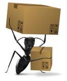 Las cajas de cartón de la hormiga que llevan entregan o mudanza Imagen de archivo libre de regalías