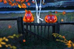 Las calabazas anaranjadas fantasmagóricas de Halloween con brillar intensamente observan delante de un prado Ejecución de Skelett fotos de archivo