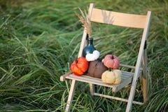 Las calabazas cosechadas adornan Fotografía de archivo