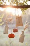 Las calabazas cosechadas adornan Foto de archivo libre de regalías