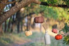 Las calabazas cosechadas adornan Imágenes de archivo libres de regalías