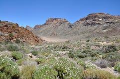 Las Canadas del Teide range Stock Image