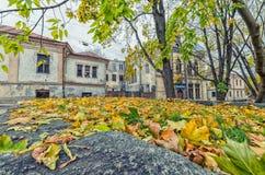 Las casas con hojas en la ciudad vieja de Vyborg Imagen de archivo libre de regalías