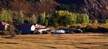 Las casas de vivienda del prado en el prado de Inner Mongolia Imagenes de archivo