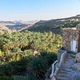 Las casas en la colina rematan alrededor de un valle por completo de las palmas datileras Imagen de archivo libre de regalías