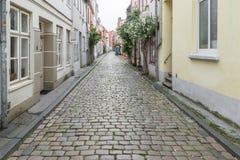 Las casas viejas hermosas en Luebeck adornaron con la flor color de rosa, Alemania Imagen de archivo