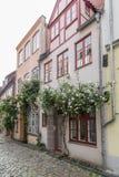 Las casas viejas hermosas en Luebeck adornaron con la flor color de rosa, Alemania Fotografía de archivo libre de regalías