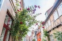 Las casas viejas hermosas en Luebeck adornaron con la flor color de rosa, Alemania Imágenes de archivo libres de regalías