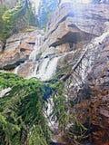 Las cascadas derriban el árbol Fotografía de archivo libre de regalías