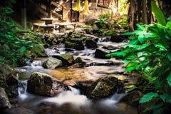Las cascadas naturales del invierno, opiniones del río, parques enormes del bosque, fondo son mojadas con las rocas foto de archivo
