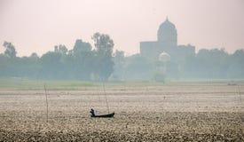 Las castañas de agua cosechan, Rajasthán, la India Foto de archivo
