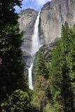 Las cataratas de Yosemite Imagenes de archivo