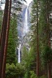 Las cataratas de Yosemite en California, los E.E.U.U. fotografía de archivo