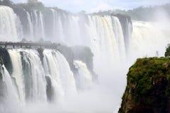 Las cataratas del Iguazú Imágenes de archivo libres de regalías