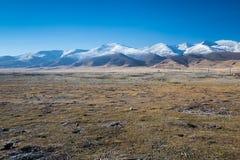 Las cercanías nevosas del lago Qinghai cerca de la ciudad de Hainan Fotos de archivo