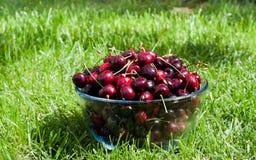 Las cerezas maduras con agua chispeante caen en un bol de vidrio en Imágenes de archivo libres de regalías