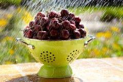 Las cerezas rojas frescas se lavan en colador verde Fotografía de archivo