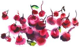 Las cerezas rojas y maduras están en la tabla foto de archivo libre de regalías