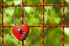 Las cerraduras rojas en ciervo forman en bokeh verde de los corazones Imagenes de archivo