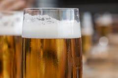 Las cervezas se cierran para arriba Imagen de archivo libre de regalías