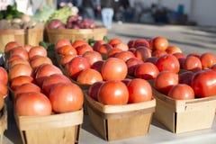 Las cestas de los tomates todas en fila en los granjeros locales comercializan los tomates frescos de la granja imagen de archivo