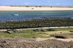 Las cestas para la ostra que cultiva advertencias están en la playa, Marruecos Imagen de archivo