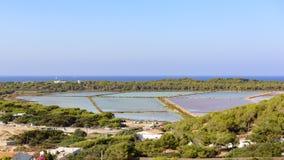 Las charcas de la sal de Ibiza Fotos de archivo libres de regalías