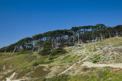 Las colinas costeras acercan a Land's End en San Francisco Imagen de archivo