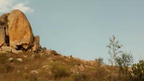 Las colinas de Horsley ajardinan, Andhra Pradesh almacen de metraje de vídeo
