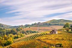 Las colinas de los viñedos de Langhe Barolo ajardinan, Piamonte, Italia Imagen de archivo