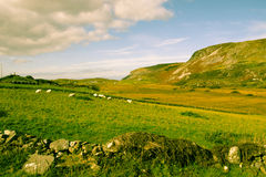 Las colinas de Malainn Mhoir Fotos de archivo libres de regalías