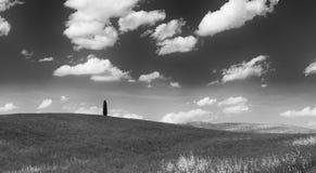 Las colinas de Montalcino, una ciudad del vino, Siena Imágenes de archivo libres de regalías