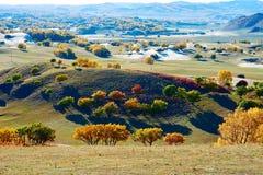 Las colinas del otoño en la estepa Fotos de archivo libres de regalías