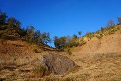 Las colinas famosas del amor del soporte Semeru fotografía de archivo