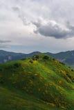 Las colinas verdes Imagen de archivo libre de regalías