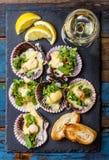 Las conchas de peregrino cocidas en pizarra con el limón, cilantro, empanan el vino blanco foto de archivo